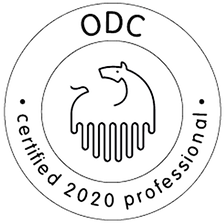 ODC certified professional 2020
