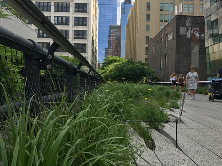 SU17 Adventure, Day 2: High Line and Alive After 5