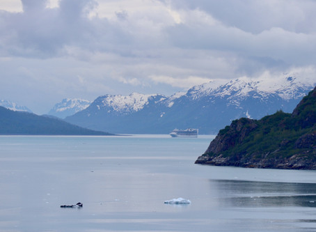 My Solo 7-Day Alaska Cruise: How and Why