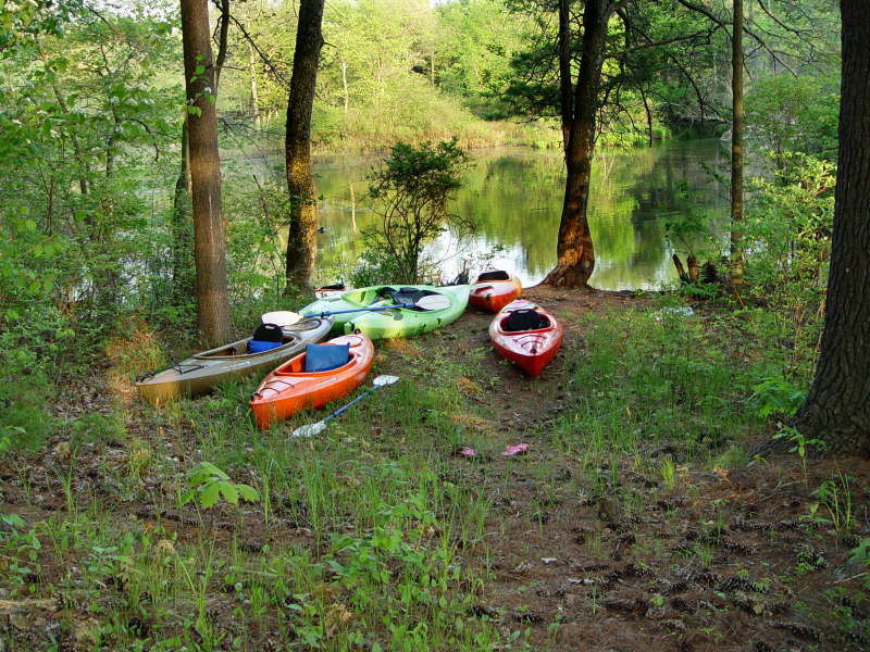 kayaks in woods