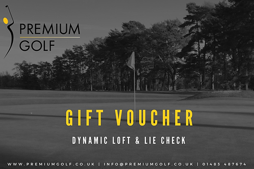 Dynamic loft & lie check (club consultation)
