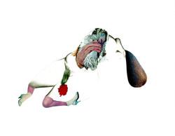 Collage sketch for The Medusa (2020)
