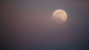November Full Moon~