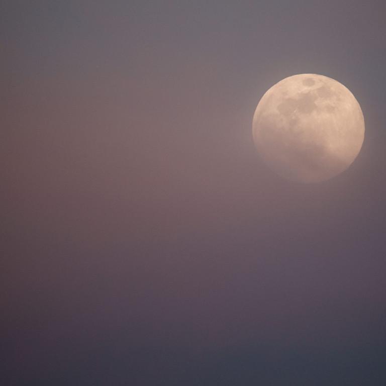 Breathwork Full Beaver Moon Afternoon Circle