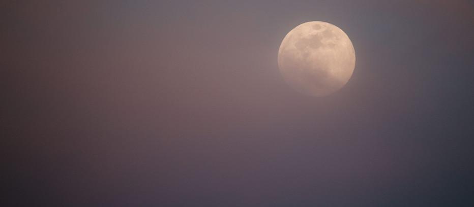 Worm Moon!!!
