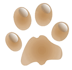 kisspng-dachshund-cat-paw-pet-clip-art-a