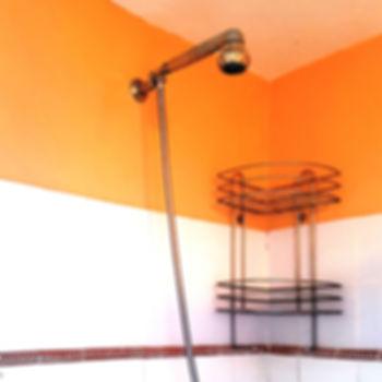 bathroom (shower)CROPPED _edited.jpg