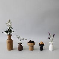 5 כלים.jpg