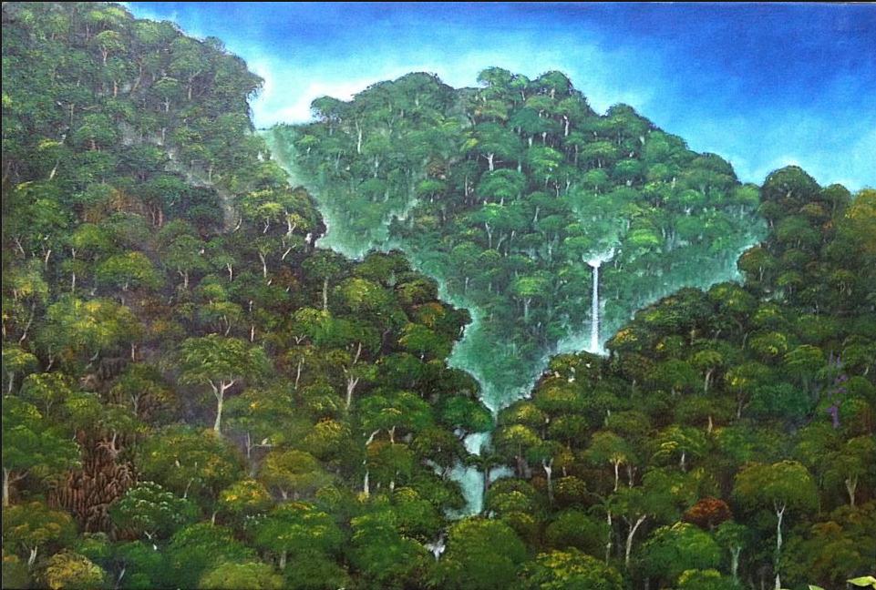 Monteverde Outdoors