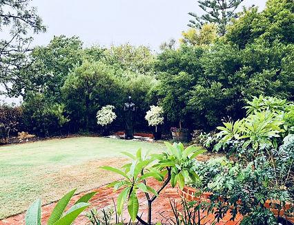 Garden rain.jpg