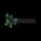 logo_rizoma.png
