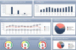 Actinvision  SAP Business Objects Dashboard