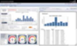 Actinvision  SAP BI Launchpad