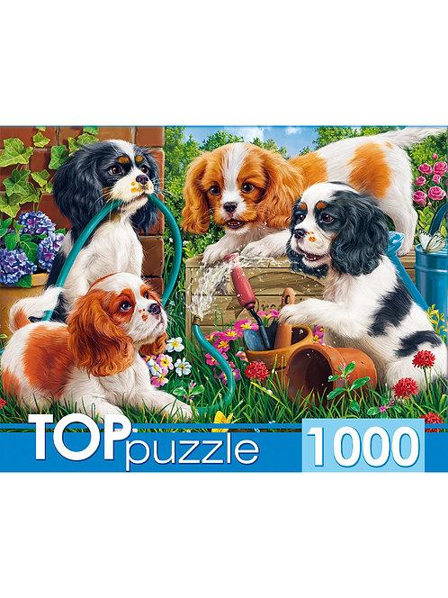 TOPpuzzle. ПАЗЛЫ 1000 элементов. ХТП1000-2159 Озорные щенки спаниелей