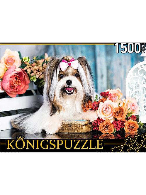 Konigspuzzle. ПАЗЛЫ 1500 элементов. ШТK1500-0673 ЙОРКШИРСКИЙ ТЕРЬЕР В ЦВЕТАХ