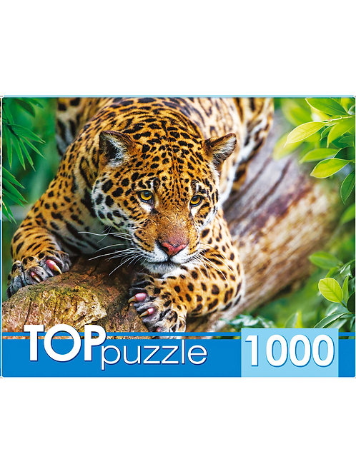 TOPpuzzle. ПАЗЛЫ 1000 элементов. ШТТП1000-4305 Грациозный леопард на дереве