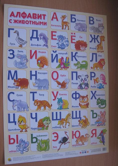 """Плакат детский настенный """"Алфавит с животными"""" ПРОФ-ПРЕСС"""