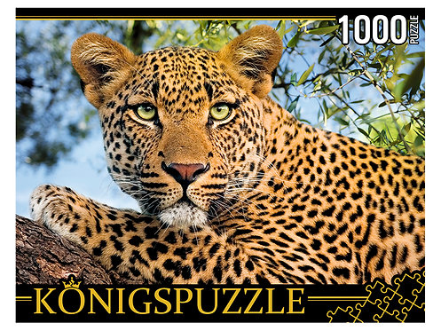 Konigspuzzle. ПАЗЛЫ 1000 элементов. ГИK1000-0648 ПОРТРЕТ ЛЕОПАРДА