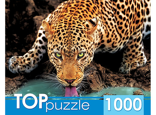 TOPpuzzle. ПАЗЛЫ 1000 элементов. ГИТП1000-2146 Красивый леопард