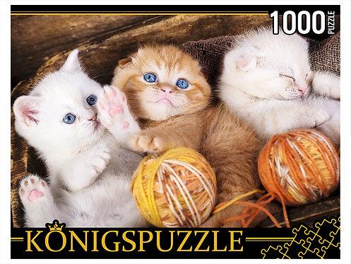 Konigspuzzle. ПАЗЛЫ 1000 элементов. ШТK1000-0644 ТРИ КОТЁНКА С КЛУБКАМИ
