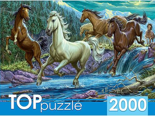 TOPpuzzle. ПАЗЛЫ 2000 элементов. ХТП2000-1594 Ночной табун лошадей