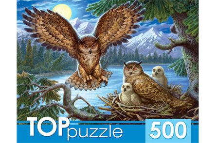 TOPpuzzle. ПАЗЛЫ 500 элементов. ХТП500-4218 НОЧНЫЕ СОВЫ