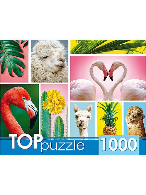 TOPpuzzle. ПАЗЛЫ 1000 элементов. ГИТП1000-4137 Модный коллаж