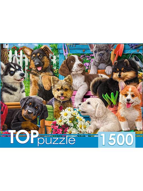 TOPpuzzle. ПАЗЛЫ 1500 элементов. ХТП1500-1588 Компания щенков в саду