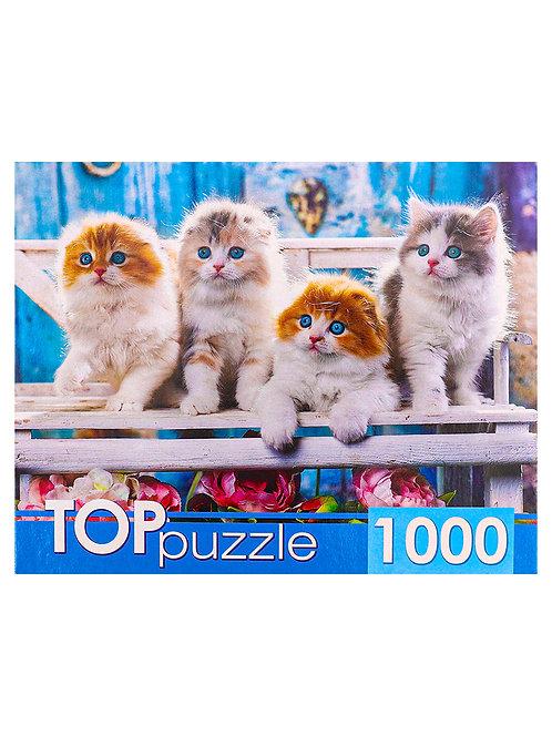 TOPpuzzle. ПАЗЛЫ 1000 элементов. ШТТП1000-4154 Котята скоттиш фолд