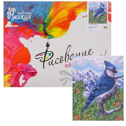Картина по номерам «Голубая сойка» 40 × 50 см