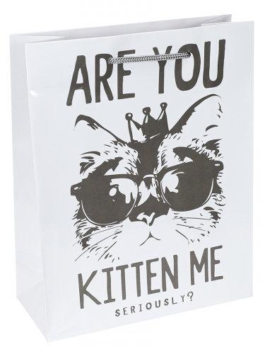 Optima Пакет подарочный с глянцевой ламинацией 26,4x32,7x8 см  (L) Модный кот, 1