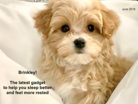 and the winner is...Brinkley!