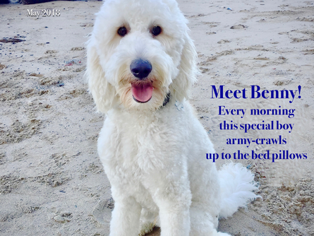And the winner is...Benny!