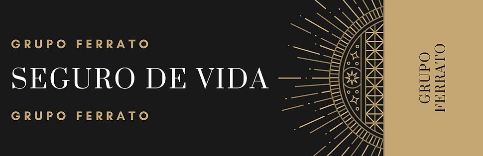 SEGURO DE VIDA LARGO.png
