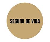 SEGURO DE VIDA CIRCULAR.png