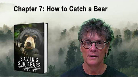 Chapter 7 How to Catch a Bear