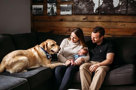 South Buffalo Indoor Newborn Photo Shoot with Dog