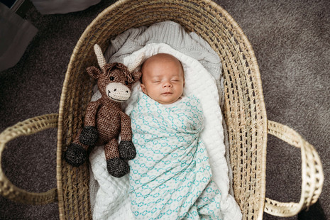 Baby in a basket with stuffed animal during lifestyle newborn photos.