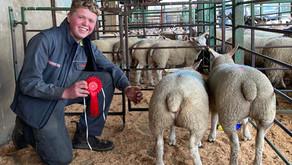 Bentham Auction May Spring Lamb Show (week 3)...
