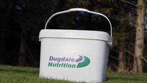 NEW!! DN Progressive Summer Garlic Buckets...