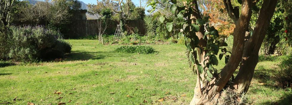 Fruit trees and an organic veggie garden