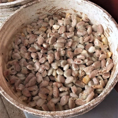 Wet beans.jpg