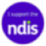 I-support-the-NDIS-v0.3-01.png