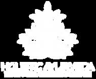 Holistic Ayerveda white logo.png