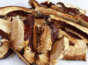Reishi slices.jpg