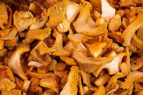 Chanterelles (dried)