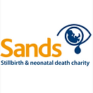 SANDS Logo for site.png