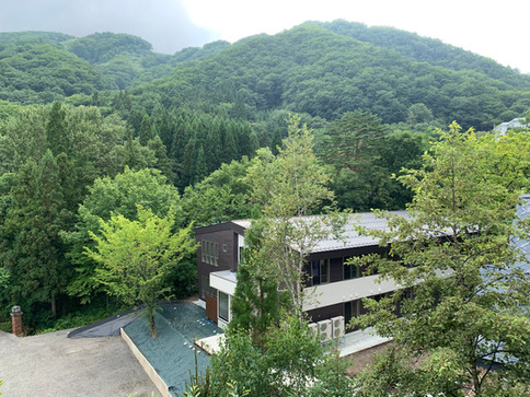 Arial View - Wadano Forest Apartments
