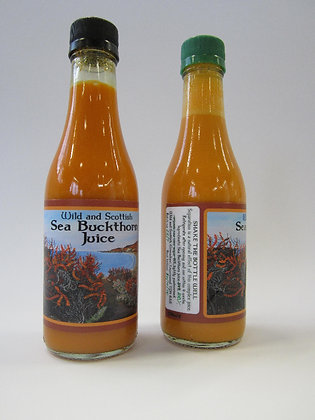 6 x Wild Scottish Sea Buckthorn Juice