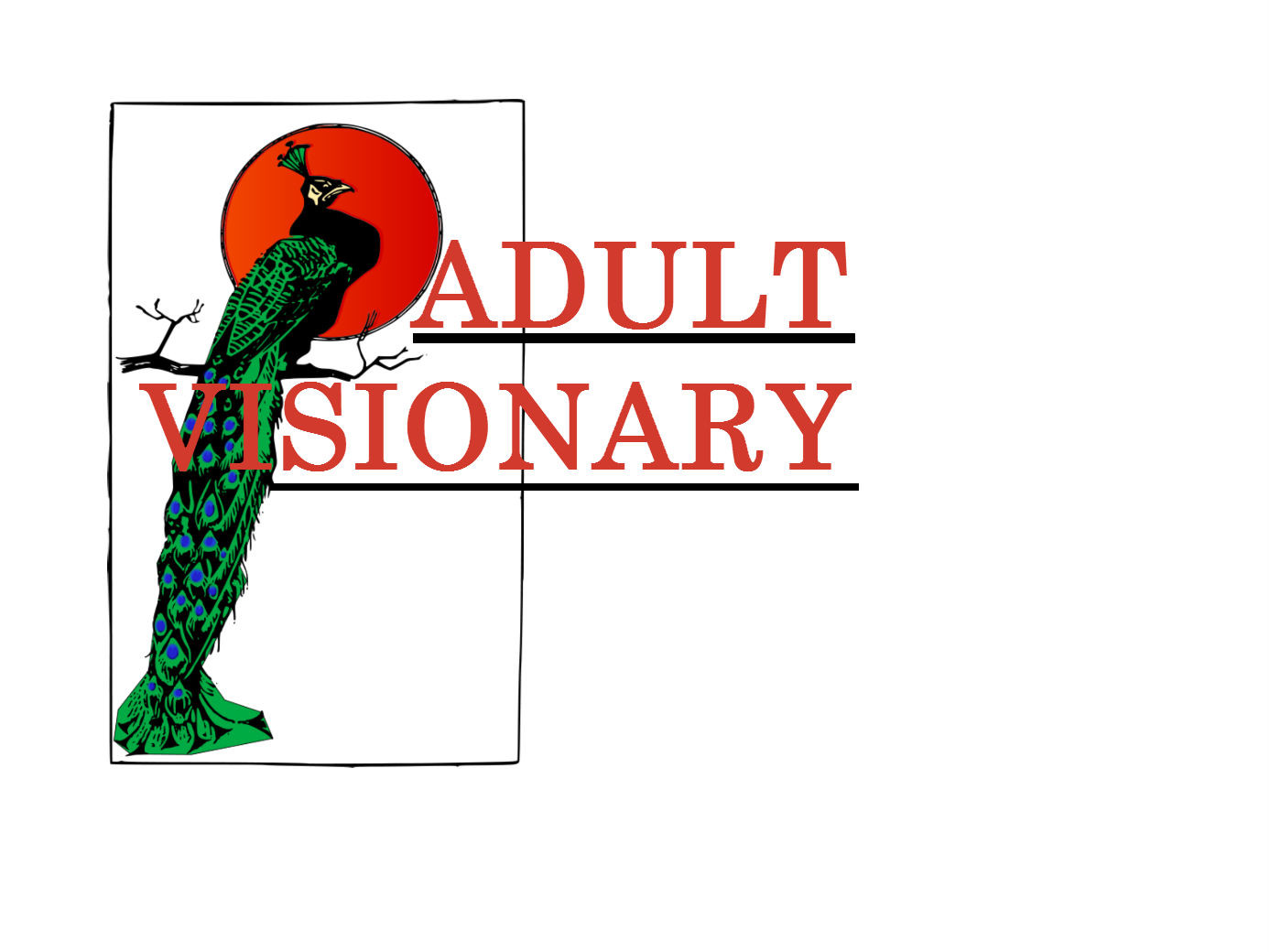 Adult Visionary In-Home Services